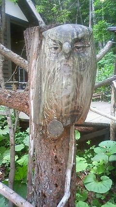 倉本聰さんの友人昨 木彫りのふくろう